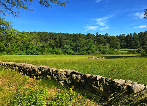 field and rock wall in Gardner MA